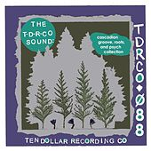 The T-D-R-Co Sound: Cascadian Groove, Roots, and Psych Collection di Various Artists