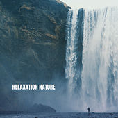 Relaxation Nature by White Noise Research (1)