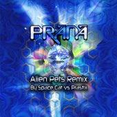 Alien Pets Remix de Prana