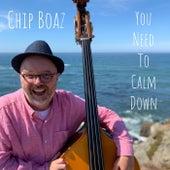 You Need to Calm Down von Chip Boaz