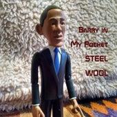 Barry in My Pocket by Steel Wool
