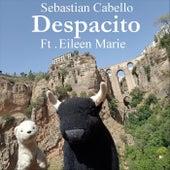 Despacito (feat. Eileen Marie) de Sebastian Cabello