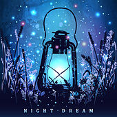 Night Dream by Various Artists
