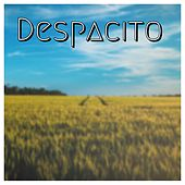 Despacito by Arun Prajith