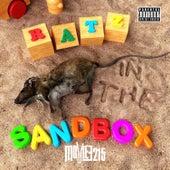 Ratz In The Sandbox by Moviee215