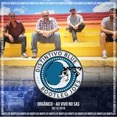 Bootleg Joes Orgânico: Ao Vivo no Sas de Distintivo Blue