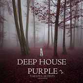 Deep House Purple 2 by Various Artists