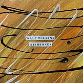 Wishbones by Walt Wilkins