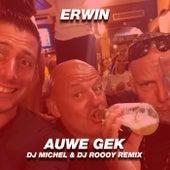 Auwe Gek (DJ Michel & DJ Roooy Remix) by Erwin