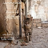 We Don't Talk Much by Alley Cat Blues Band