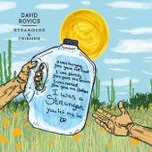 Strangers & Friends by David Rovics
