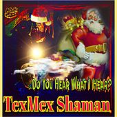 Do You Hear What I Hear? von Texmex Shaman