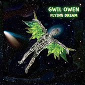 Flying Dream von Gwil Owen