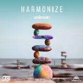 Harmonize by Animato