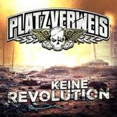 Keine Revolution by Platzverweis