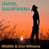 Hotel California von Various Artists