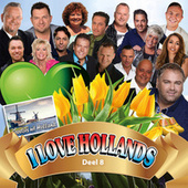 I Love Hollands 8 by Various Artists
