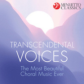 Transcendental Voices: The Most Beautiful Choral Music Ever de Various Artists