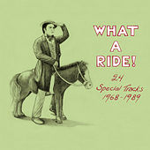 What a Ride! 24 Special Tracks 1968-1989 by Various Artists