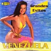 Grandes Éxitos de Grupo Venezuela