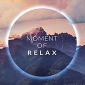 Moment of Relax: Jazz that'll Make You Rest, Relax, Calm and Soothe Your Nerves de Relaxing Instrumental Music