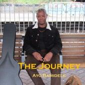 The Journey von Ayo Bamidele