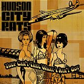 They Can't Take What I Ain't Got di Hudson City Rats