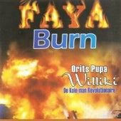 Faya Burn de Pupa Orits Williki