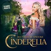 Het Magische Familiespektakel de Cinderella