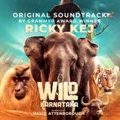 Wild Karnataka de Ricky Kej