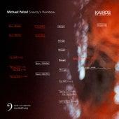 Michael Pelzel: Gravity's Rainbow by Various Artists