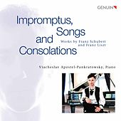 Schubert & Liszt: Works de Viacheslav Apostel-Pankratowsky