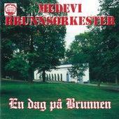 En dag på Brunnen (Live) by Medevi Brunnsorkester