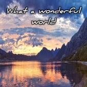 What a Wonderful World de Chris Kramer
