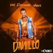 Vai Descendo Amor de DJ Cabide