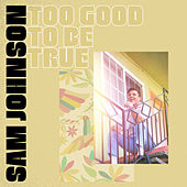 Too Good To Be True by Sam Johnson