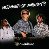 Metamorfose Ambulante de Alquímea