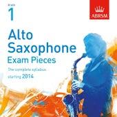 Alto Saxophone Exam Pieces, Starting 2014, ABRSM Grade 1 de Chris Swann