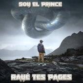 Rayé tes pages de Soy El Prince