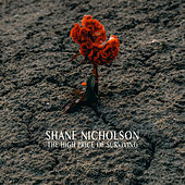 The High Price Of Surviving by Shane Nicholson