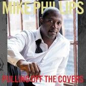 Flava In Ya Ear (Remix) by Mike Phillips