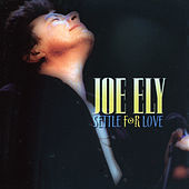 Settle For Love de Joe Ely