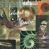Natural Wonder von Stevie Wonder