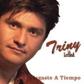 Llegaste A Tiempo de Triny La Leyenda