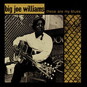These Are My Blues (Live) fra Big Joe Williams