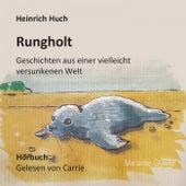 Rungholt (Geschichten aus einer vielleicht versunkenen Welt) by Heinrich Huch