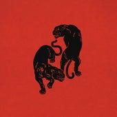 Colors (Acoustic) de Black Pumas