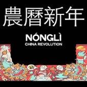 農曆新年 (Nónglì China Revolution) de Various Artists