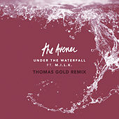 Under The Waterfall (Thomas Gold Remix) di The Avener