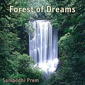 Forest of Dreams by Sambodhi Prem